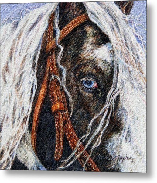 A Gypsy's Blue Eye Metal Print