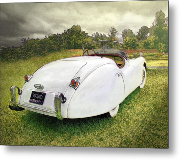 A Jag In The Park Metal Print
