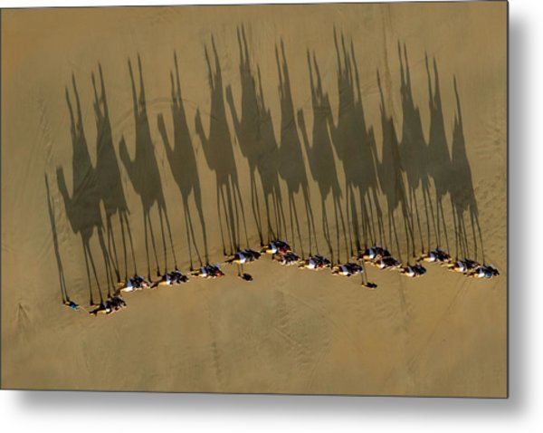A Journey Of Shadows Metal Print