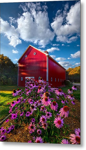 A Little More Country Metal Print