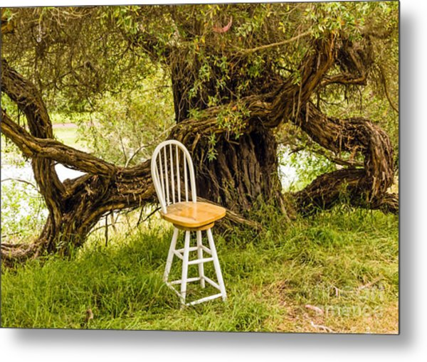 A Little Solitude Metal Print