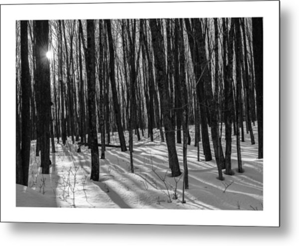 A Long Winter's Day Metal Print