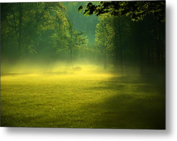 A Magical Place Metal Print by Valarie Davis