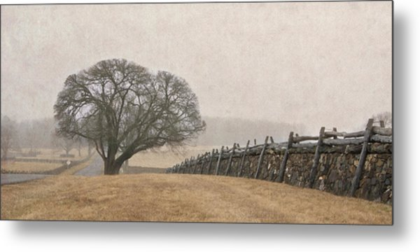 A Misty Morning In Horse Country Metal Print