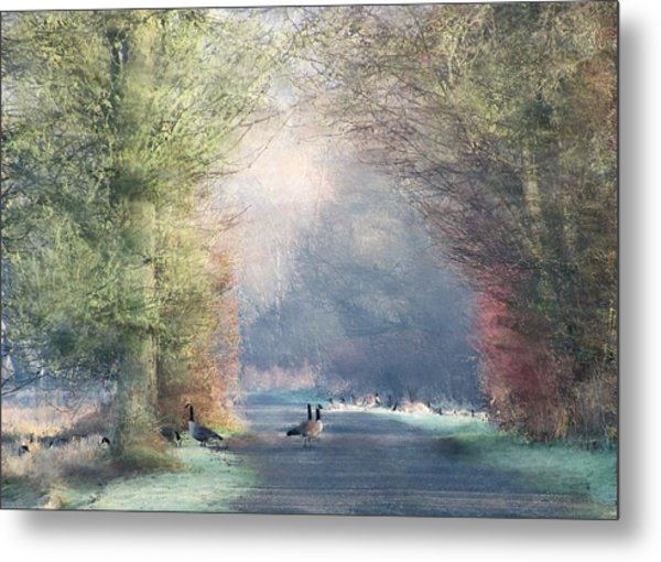 A Morning In Eden Metal Print