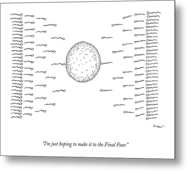 A Number Of Sperms Approach An Egg In The Shape Metal Print