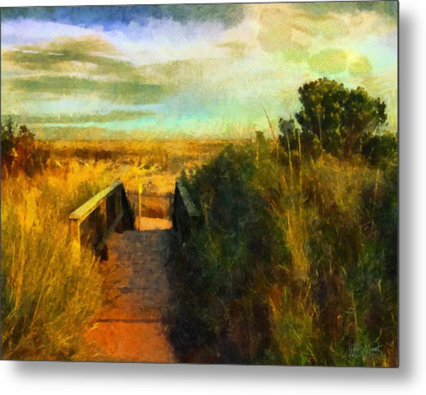 A Path To The Beach Metal Print