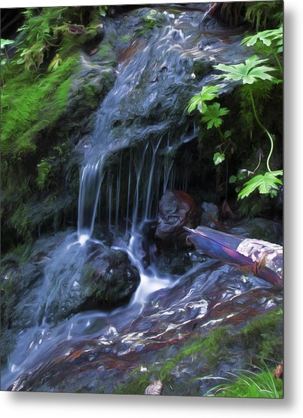 A Picture Of Fresh Spring Run Off. Metal Print