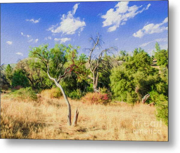 A Place Of Serenity 3 Metal Print