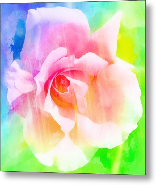 A Rainbow Of A Rose Metal Print by Cathie Tyler