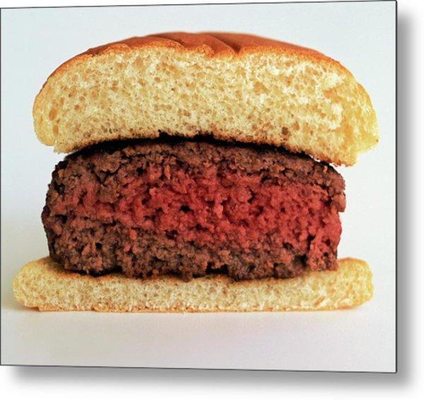 A Rare Hamburger Metal Print