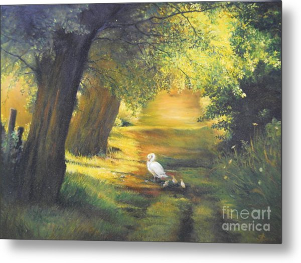 A Ray Of Sunshine  Metal Print