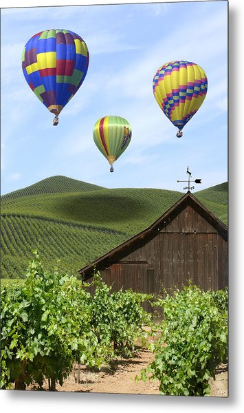 A Ride Through Napa Valley Metal Print