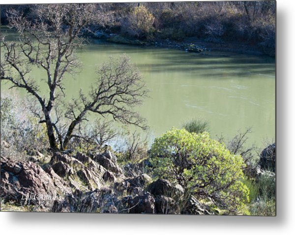 A River In Wintertime Metal Print