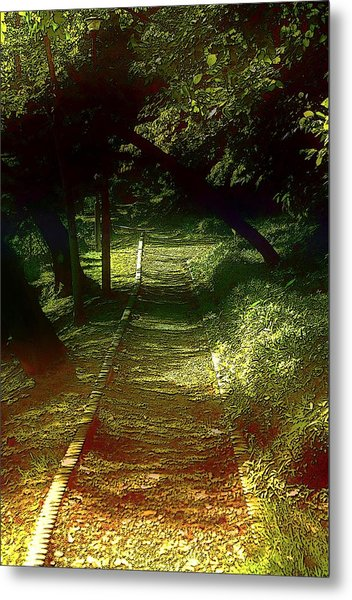 A Road Less Travelled Metal Print