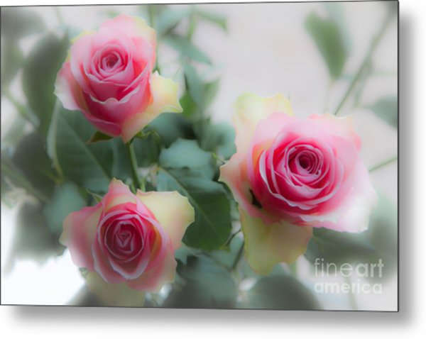 A Rose And A Rose And A Rose Metal Print