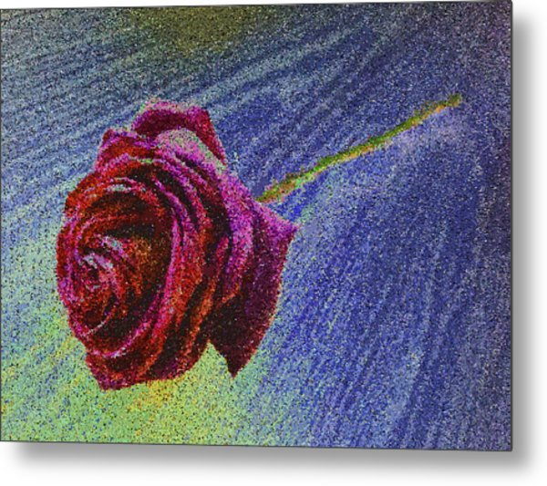 A Rose For You From Kenneth James Metal Print