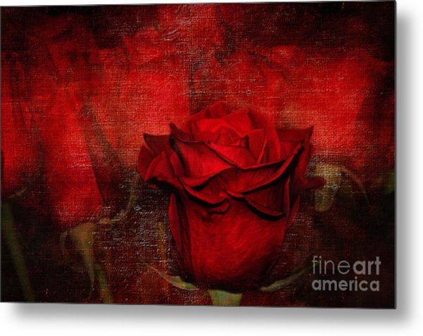 A Rose For You Metal Print