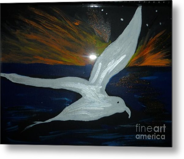 A Seagull At Night Metal Print by Marie Bulger