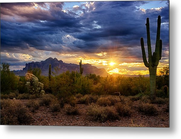 A Sonoran Desert Sunrise Metal Print