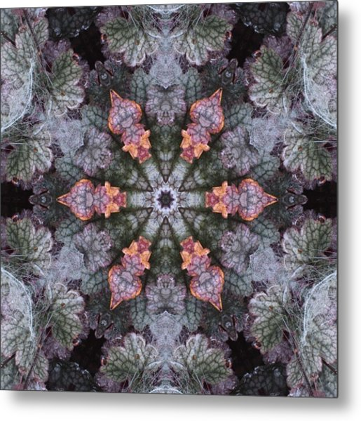 A Spider Web On Coral Bells Metal Print