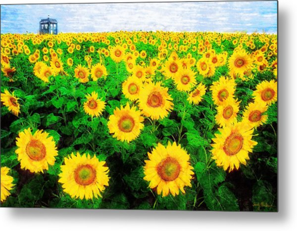 A Sunny Day With Vincent Metal Print