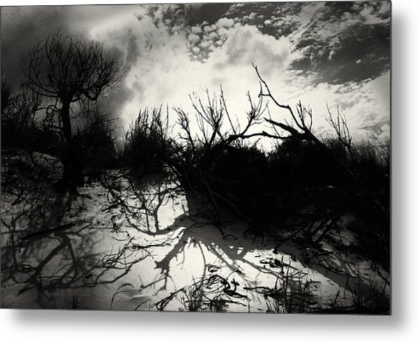 A Symphony Of Light And Shadows Metal Print