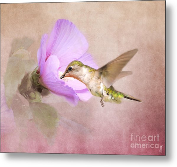 A Taste Of Nectar Metal Print