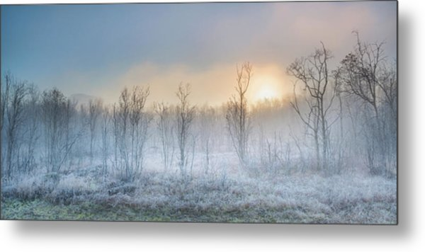 A Touch Of Winter Metal Print by Burger Jochen