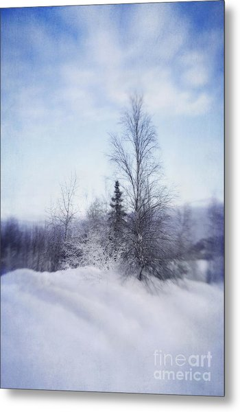 A Tree In The Cold Metal Print