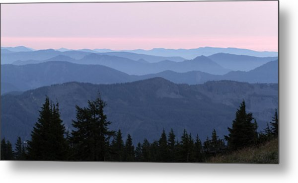 A View From Timberline Metal Print