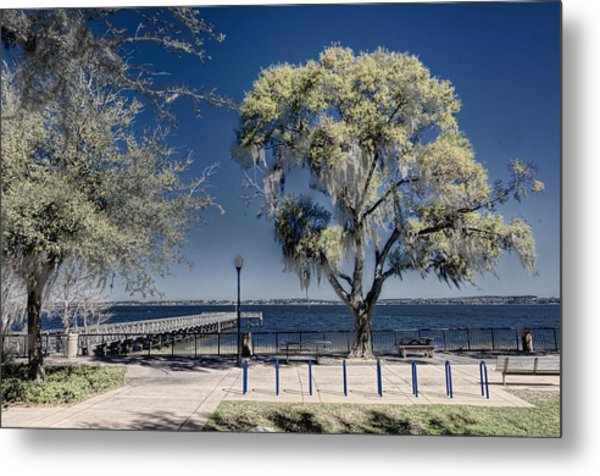 A View Of Lake Minneola Metal Print