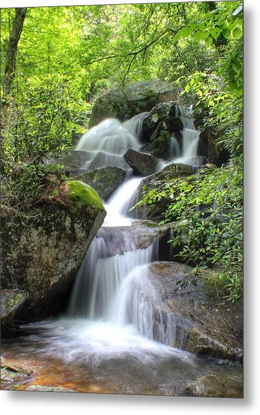 A Walk Along The Jacob Fork Metal Print