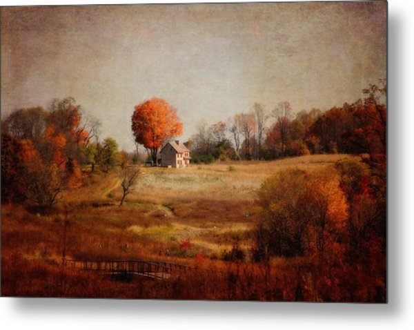 A Walk In The Meadow With Texture Metal Print