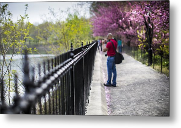 A Walk In The Park Metal Print by Chris Halford