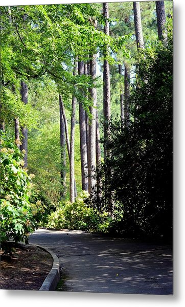 A Walk In The Shade Metal Print
