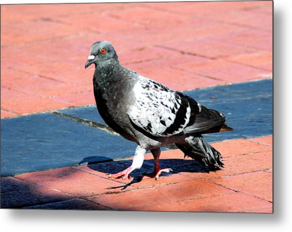 A Walk In The Square Metal Print