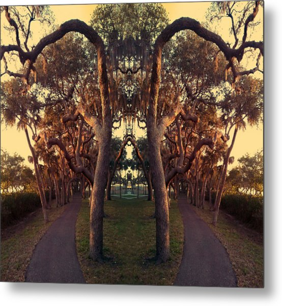 A Walk On The Not So Wild Side Metal Print