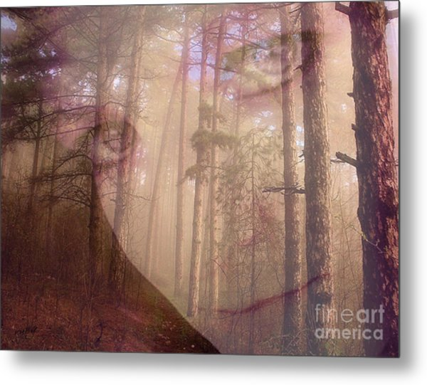 A Watchful Forest Metal Print