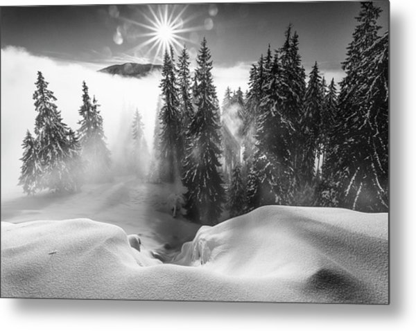 A Winter Tale ! Metal Print