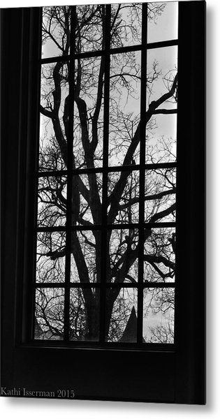 A Winter View Metal Print by Kathi Isserman