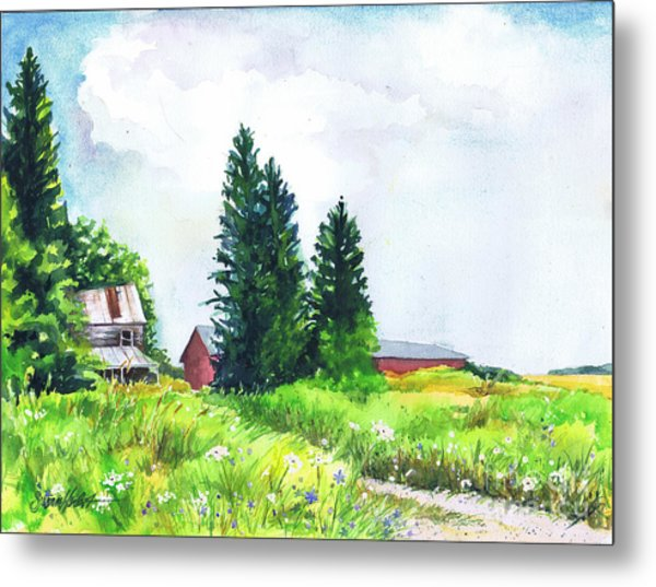 Abandoned Farmhouse Metal Print by Susan Herbst
