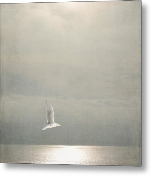 Metal Print featuring the photograph Above The Sea by Sally Banfill