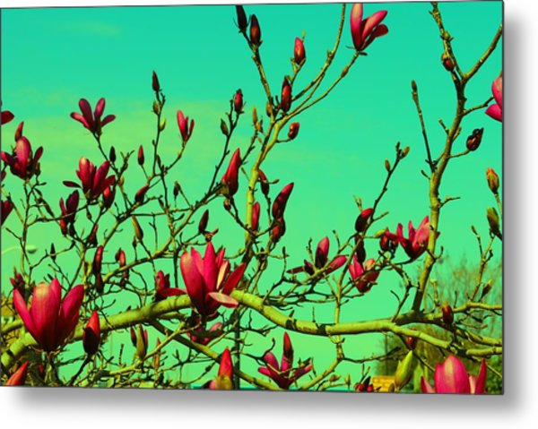 Above The Tree Metal Print