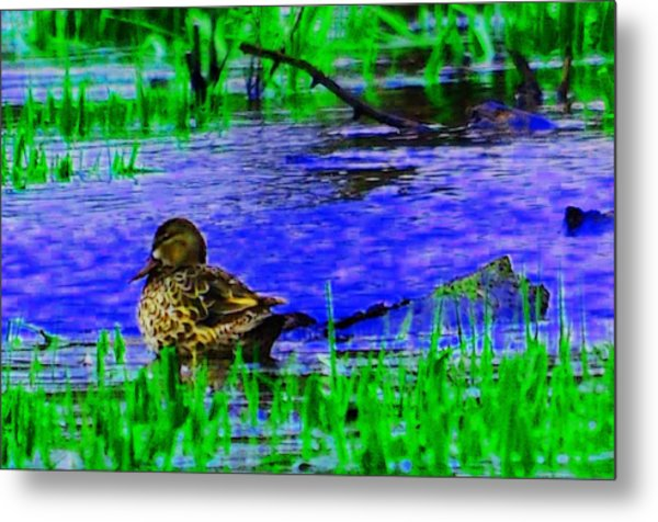 Abstract Duck Metal Print by Valarie Davis