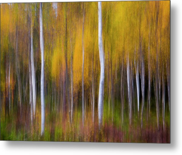 Abstract Fall Metal Print