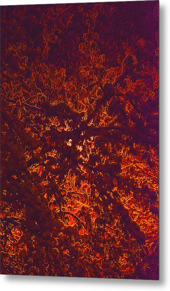 Abstract In Snow And Leaves Metal Print by Michael Fox