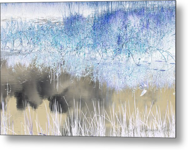 Abstract Marsh  Metal Print