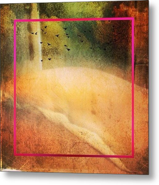 Abstraction Of Her Hips Metal Print