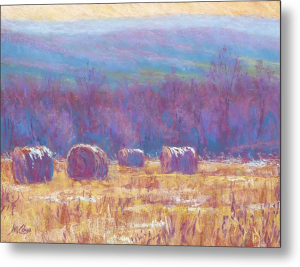 Across Dunn Valley Metal Print by Michael Camp